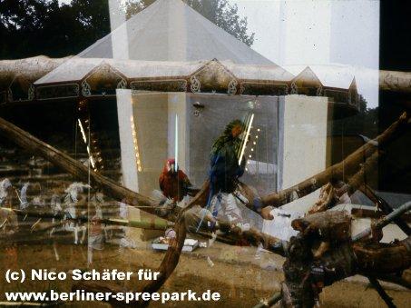 kulturpark-plaenterwald-papagaien