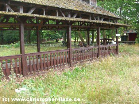 spreepark-lost-place-bahnhof-elektronische-pferdereitbahn-kentucky-ride