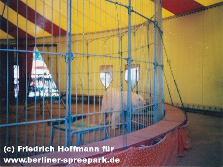 spreepark-berlin-zirkus-eisbär