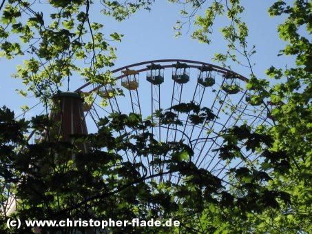 spreepark-riesenrad-im-gruenen