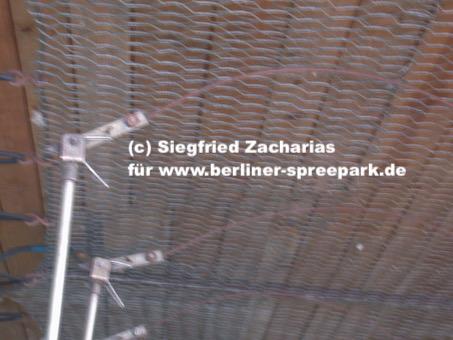 Spreepark_Lost-Place_Zacharias_Autoscoouter-Miniscooter-Technik