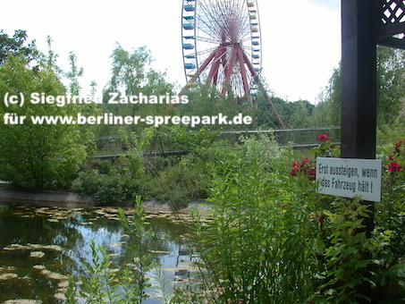 Spreepark_Lost-Place_Zacharias_Schwanensee